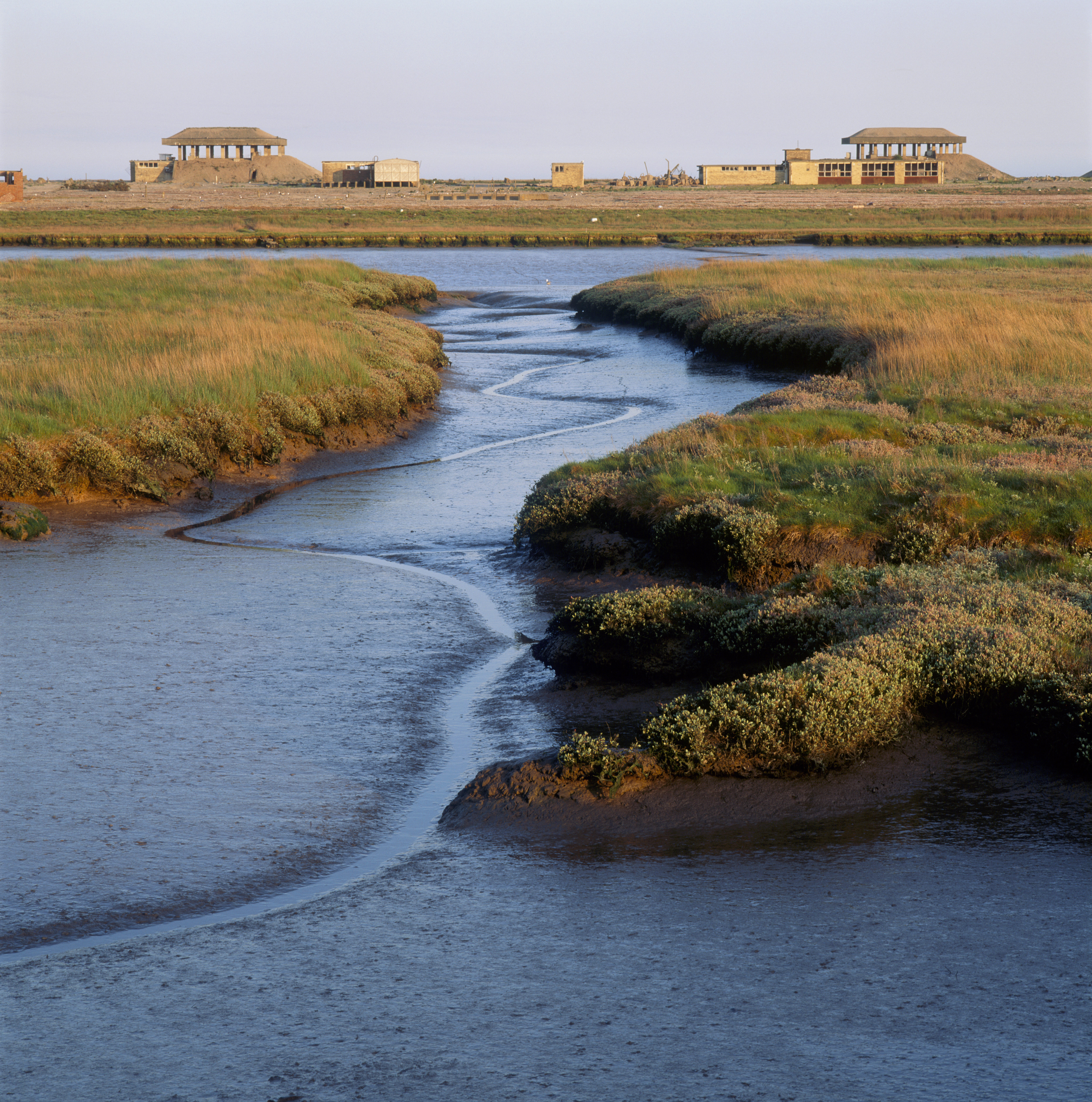 View of the pagodas from the saltings West of Stony Ditch, Suffolk