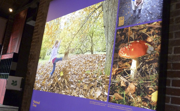Ugly Studios National Trust Sheringham Park Lightbox Exhibition Design